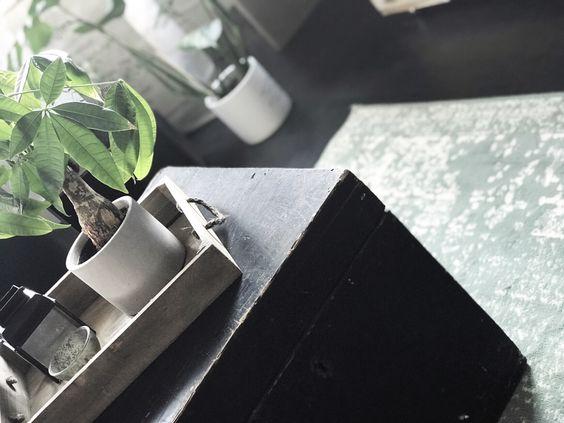 Binnenkijker-industrieel-interieur-botanisch-industrieel-interieur-stoer-wonen-industrial-interior