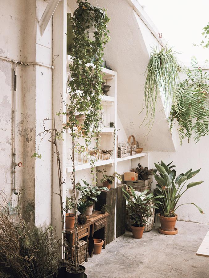 Planten-interieur-planten-woonkamer-groen-interieur-groen-wonen-jungle-interieur-botanische-woonstijl-1