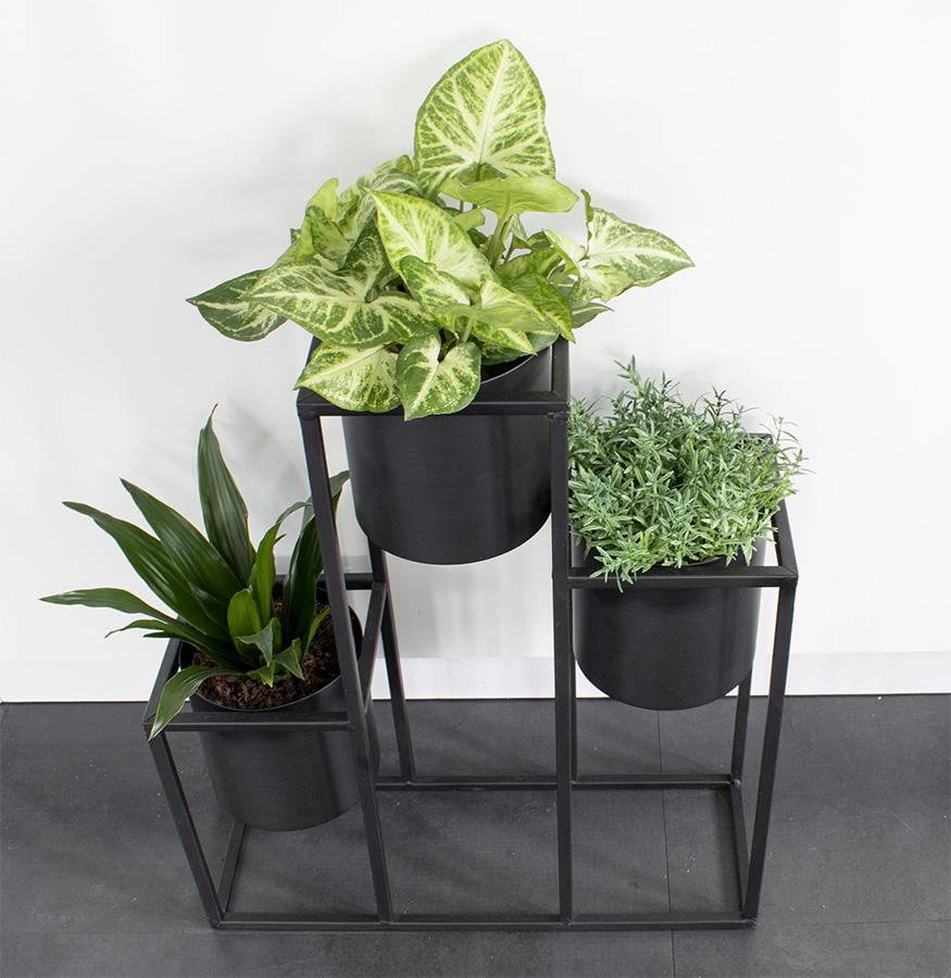 Metalen plantenrek planten in huis kamerplanten makkelijke kamerplanten groene kamerplanten bloempot industriele bloempot plantenbak