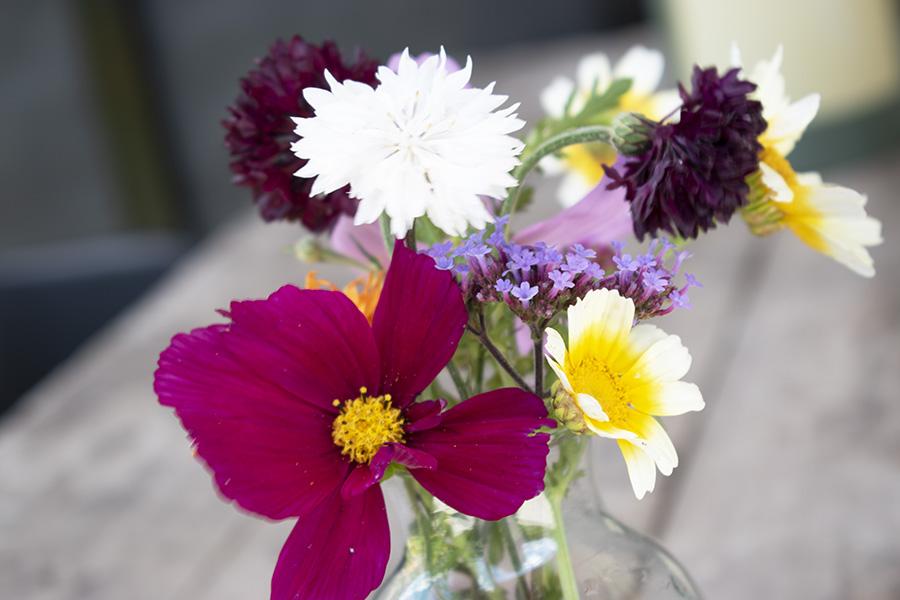 Wilde-bloemen-veldbloemen-vaasje bloemen in huis wilde bloemen vaas botanisch interieur