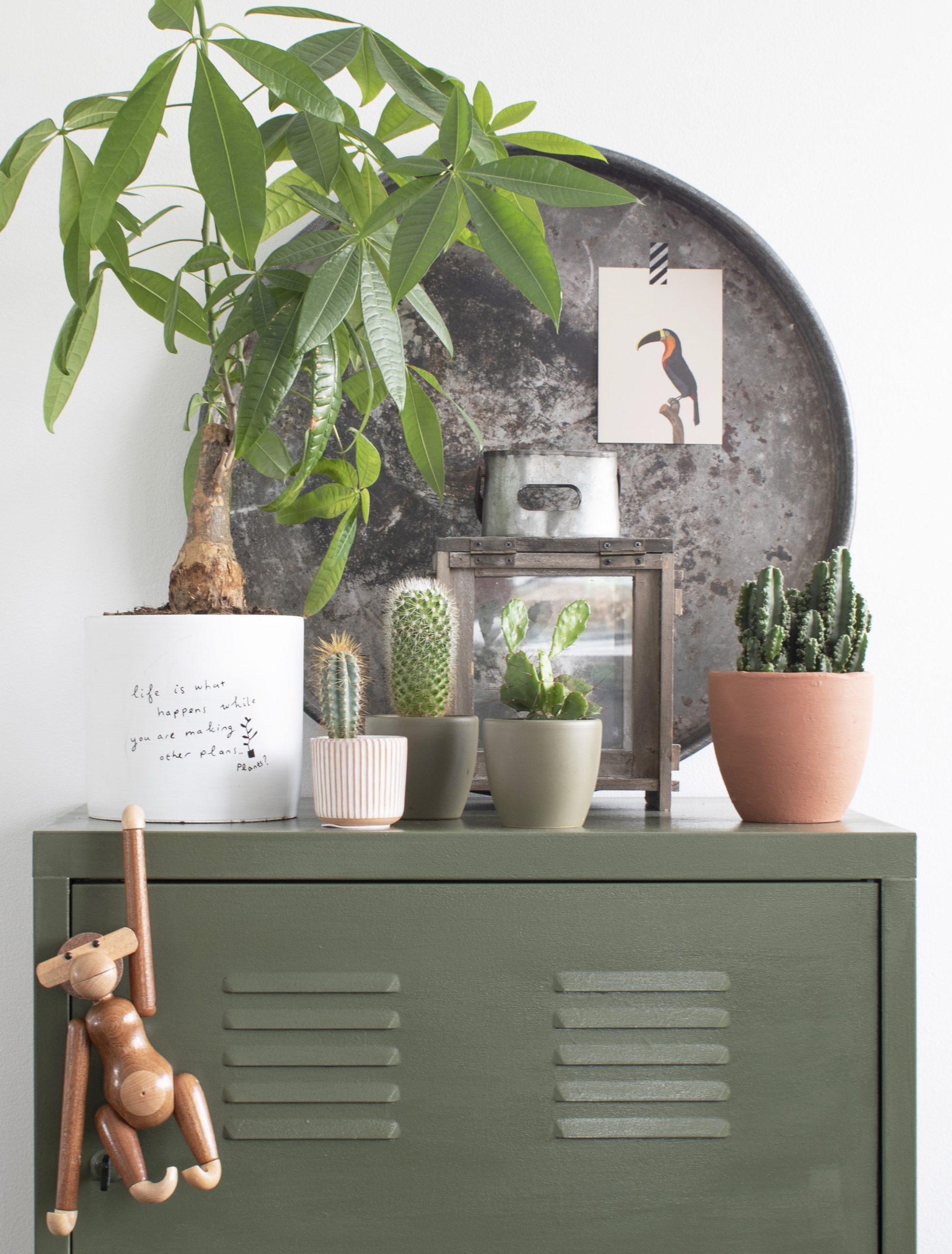 groene decoratie woondecoratie groen groene decoratie woonkamer groene accessoires groene woonaccessoires groen in huis groeninhuis meergroeninhuis groen interieur olijfgroen interieur woonkamer decoratie decoratie woonkamer accessoires