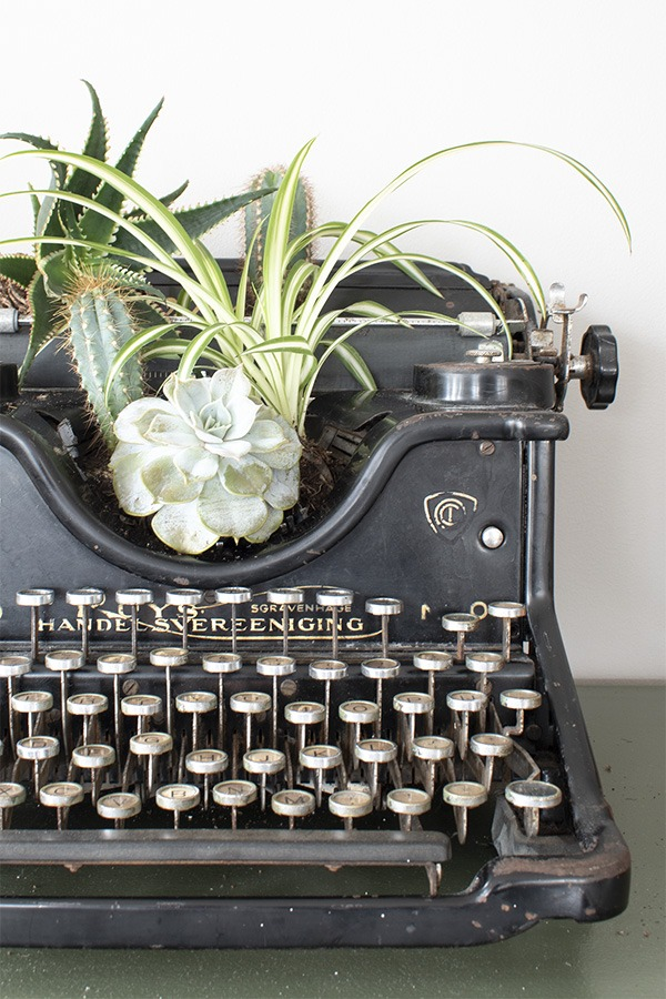 oude typemachine vintage typemachine ouderwetse typemachine antieke typemachine typemachine ouderwets typemachines olivetti typemachine eerste typemachine