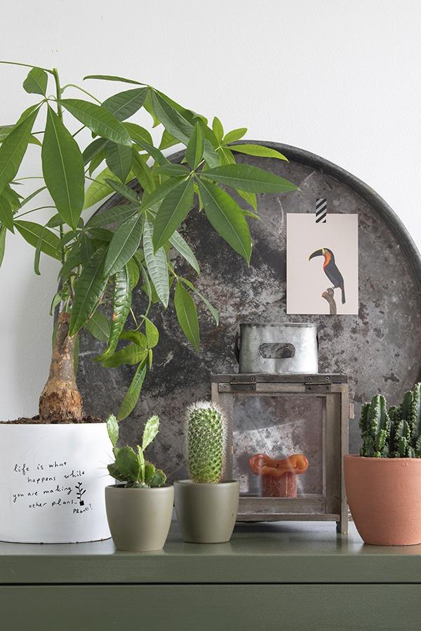 Terracotta combineren groene decoratie stylen interieur groen kastje planten in huis groen in huis woonblog