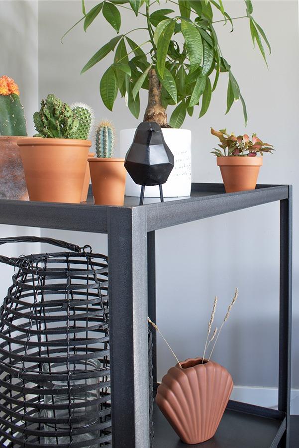 Zwarte trolley decoratie zwart wonen terracotta decoratie kleuren combineren woonblog planten in huis