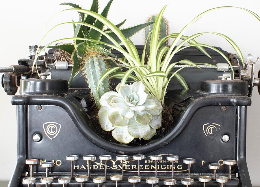 vintage typemachine groen in huis eclectisch interieur vintage decoratie planten in huis woonblog
